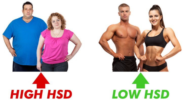 high-low-hsd