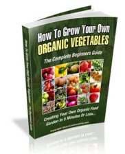 grow-your-own-organic-vegetables